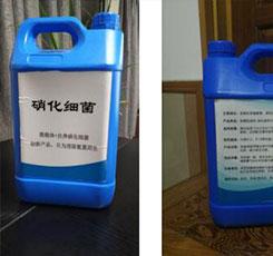 水产12博体育硝化细菌